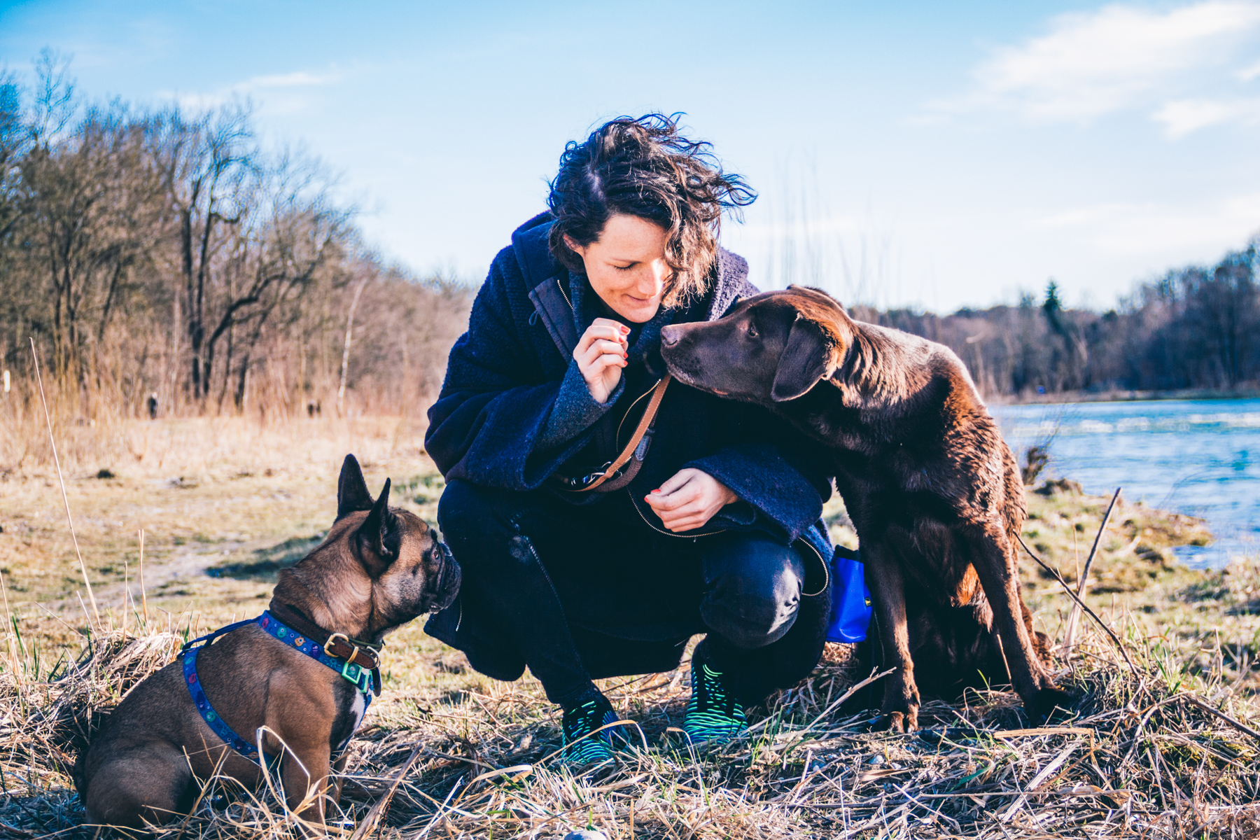 Geheimitpp München Hundetagesbetreuung Dogizil
