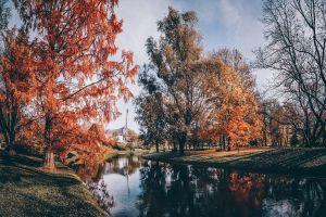Herbst, Herbsttag, München, Olympiapark, Blätter – ©Unsplash