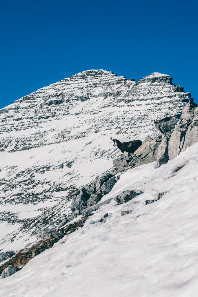 Geheimtipp Muenchen IndieBerge WellOutside Soiernspitze 17 – ©Well Outside