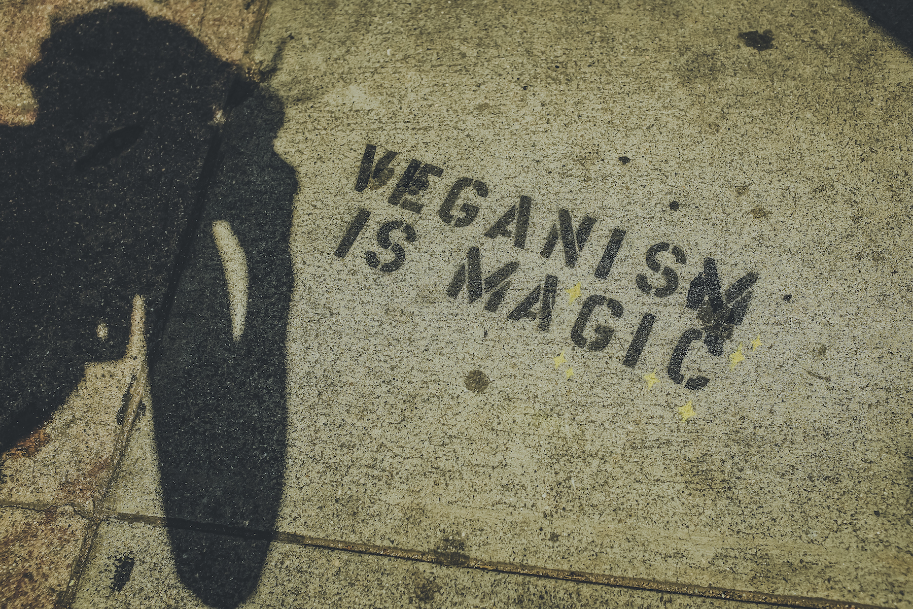 GeheimtippMuenchen Top7 Veganuar Food Vegan2 – ©Unsplash