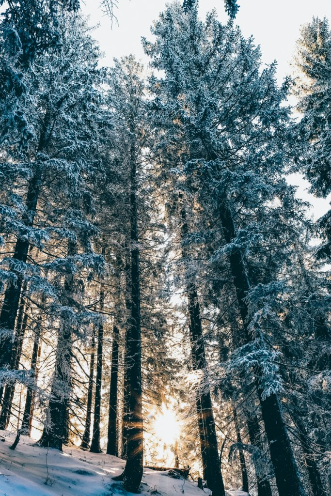 Geheimtipp Muenchen IndieBerge WellOutside Rosskopf 16 – ©Well Outside