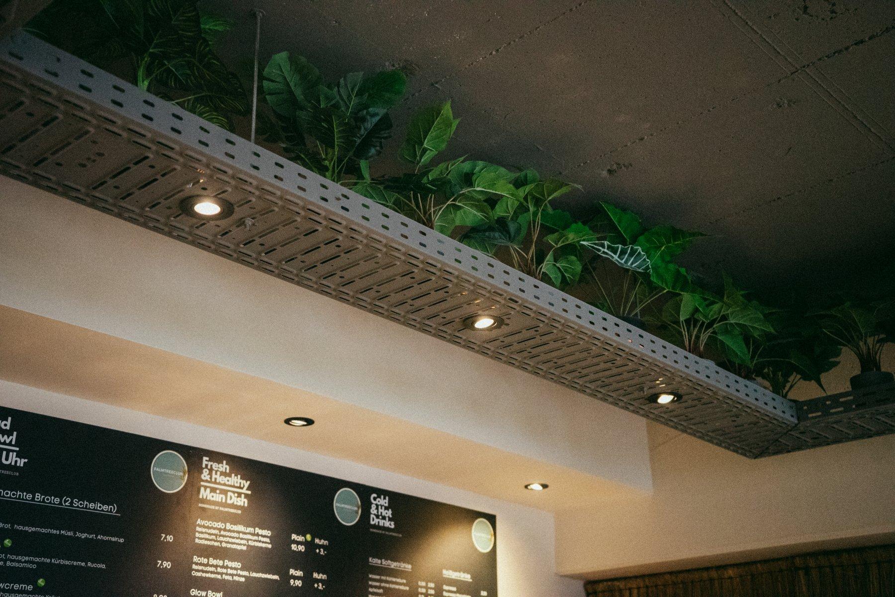 Pflanzen zieren die graue Decke des Café Palmtree Club – ©Ben Sagmeister für wunderland media GmbH