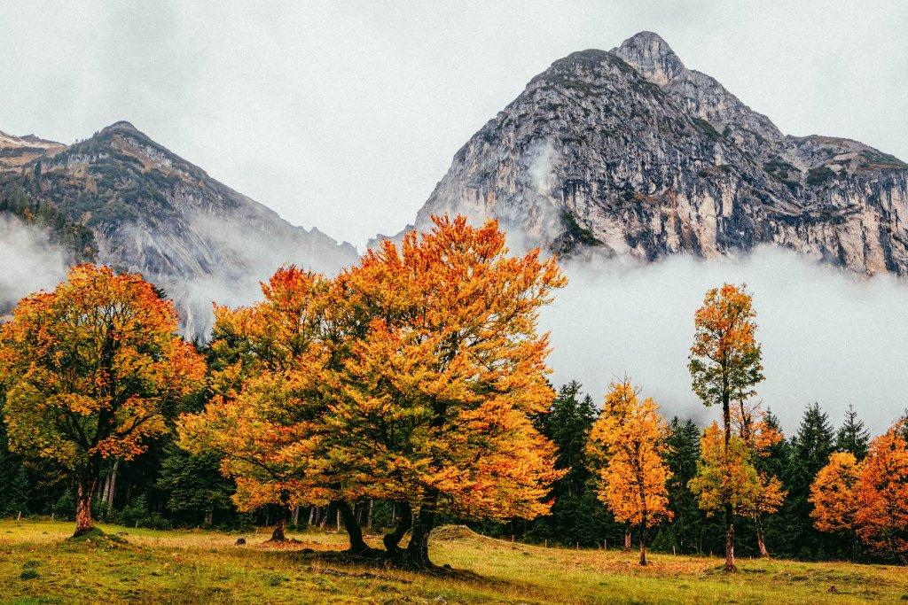 Geheimtipp Muenchen Herbst 3 – ©Unsplash