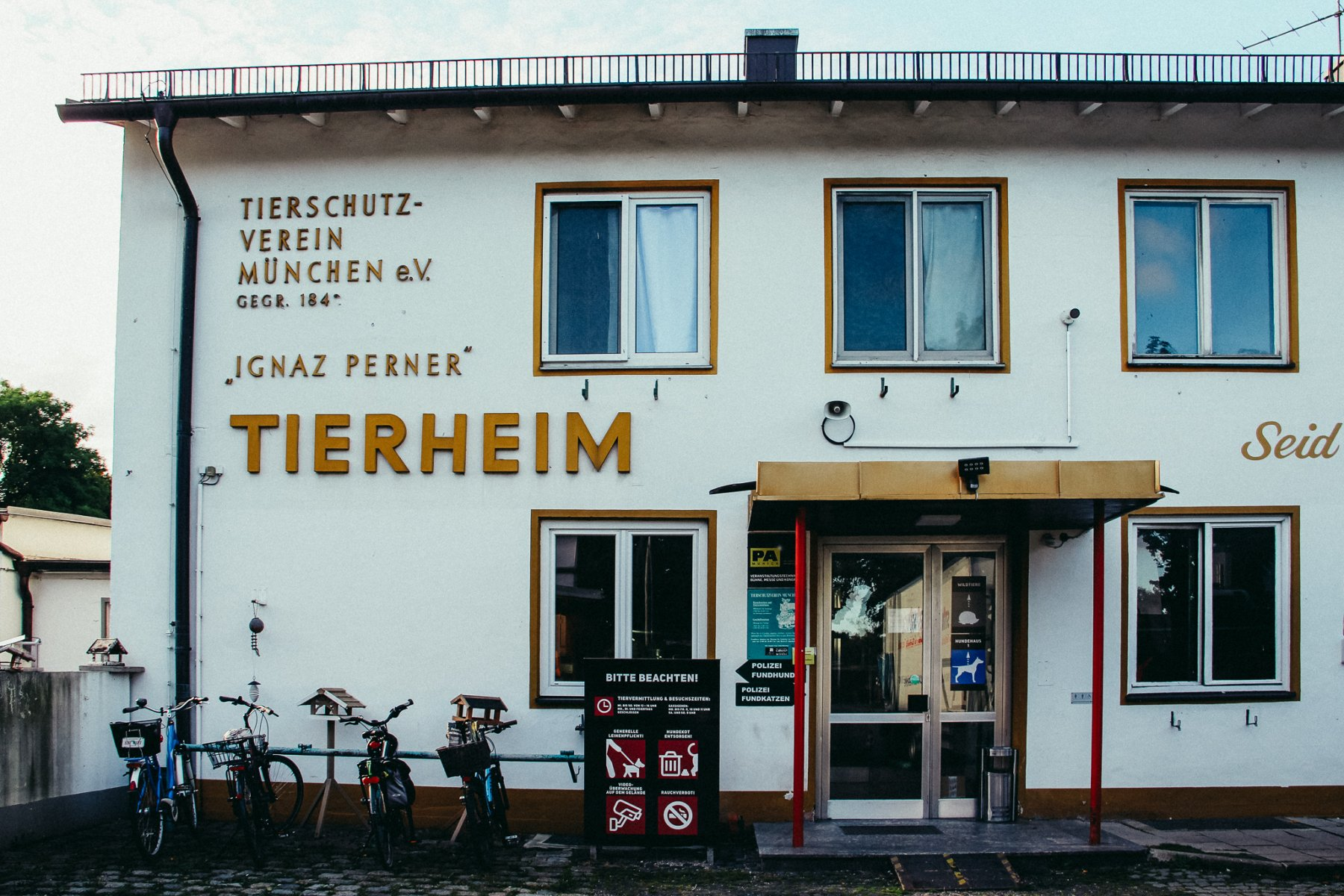 Geheimtipp München Tierheim 1 – ©wunderland media GmbH