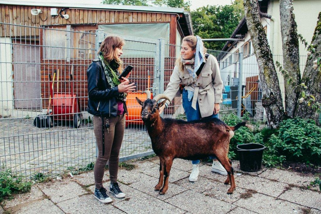 Geheimtipp München Tierheim 43 – ©wunderland media GmbH